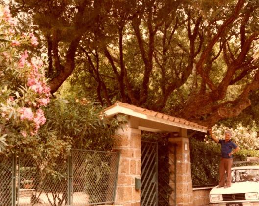 giardino - Version 2