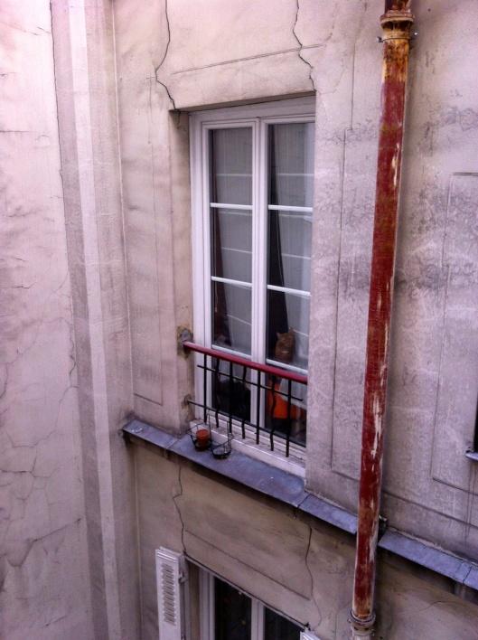 002bis-finestra-gatto180améliorè