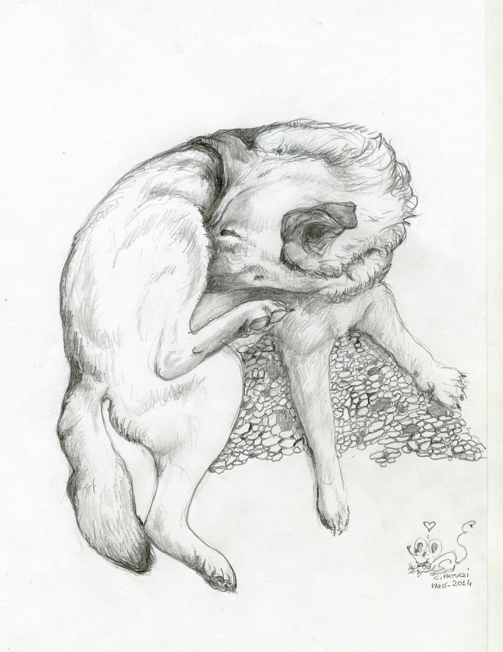 Grog Dessins Et Caricatures N 23 Decalages Et Metamorphoses
