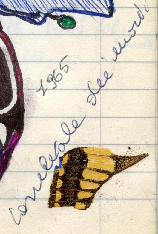 005_alafinale180-1965 - copie
